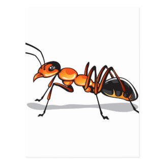 Ant vector postcard