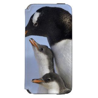 Antarctic Peninsula, Neko Harbour, Gentoo Incipio Watson™ iPhone 6 Wallet Case