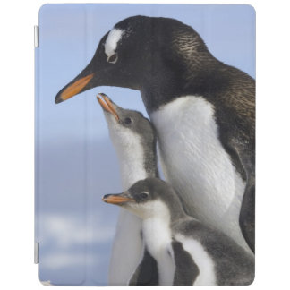 Antarctic Peninsula, Neko Harbour, Gentoo iPad Cover