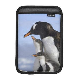 Antarctic Peninsula, Neko Harbour, Gentoo iPad Mini Sleeve