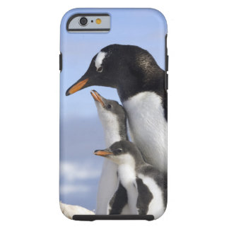 Antarctic Peninsula, Neko Harbour, Gentoo Tough iPhone 6 Case