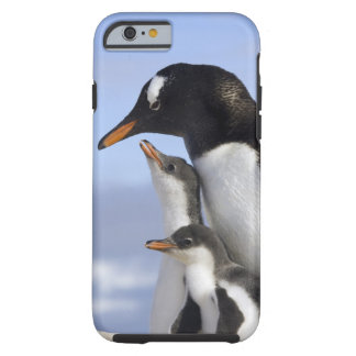Antarctic Peninsula, Neko Harbour, Gentoo Tough iPhone 6 Case