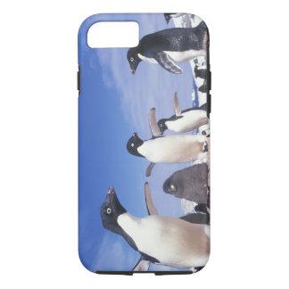 Antarctica, Adelie Penguin Pygoscelis iPhone 8/7 Case