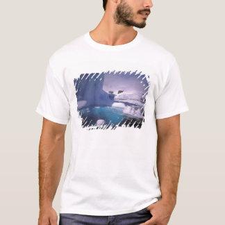 Antarctica. Antarctic icescapes 2 T-Shirt