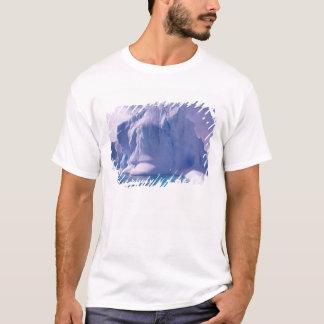 Antarctica. Antarctic icescapes T-Shirt