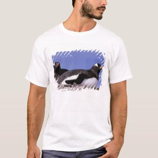 Antarctica, Antarctic Peninsula, Peterman T-Shirt