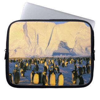 Antarctica, Antarctic Peninsula, Weddell Sea, 4 Laptop Sleeve