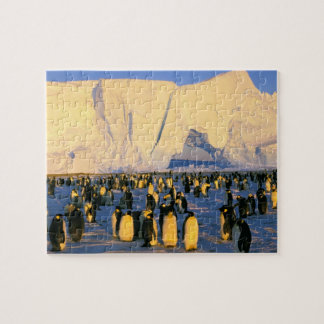 Antarctica, Antarctic Peninsula, Weddell Sea, 4 Puzzles