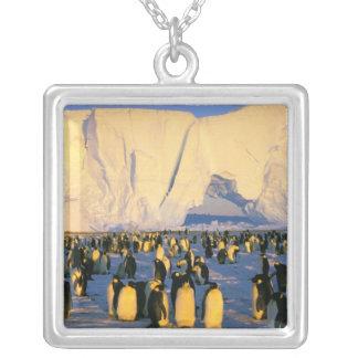 Antarctica, Antarctic Peninsula, Weddell Sea, 4 Silver Plated Necklace