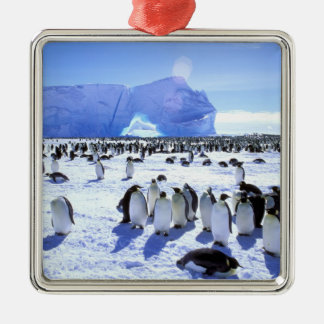 Antarctica, Antarctic Peninsula, Weddell Sea, 5 Silver-Colored Square Decoration