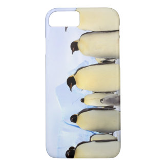 Antarctica, Antarctic Peninsula, Weddell Sea, iPhone 8/7 Case