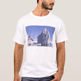 Antarctica, Antarctic Peninsula. Zodiak and T-Shirt