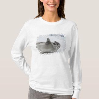 Antarctica, Antarctic Penninsula, Antarctic 2 T-Shirt