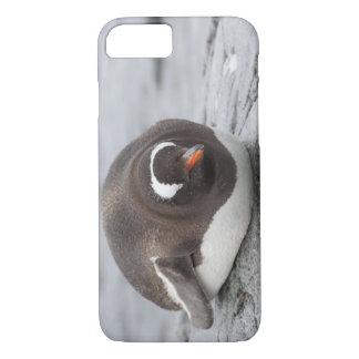 Antarctica, Antarctic Penninsula. Petermann iPhone 7 Case