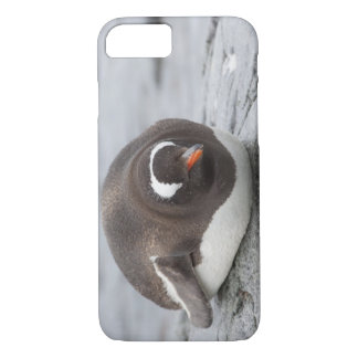Antarctica, Antarctic Penninsula. Petermann iPhone 8/7 Case