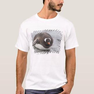 Antarctica, Antarctic Penninsula. Petermann T-Shirt