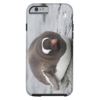 Antarctica, Antarctic Penninsula. Petermann Tough iPhone 6 Case