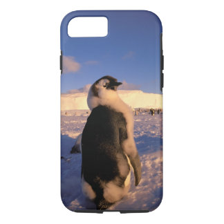 Antarctica, Australian Antarctic Territory, 2 iPhone 8/7 Case