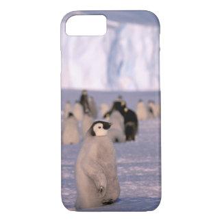 Antarctica, Australian Antarctic Territory, 3 iPhone 8/7 Case