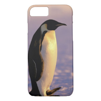 Antarctica, Australian Antarctic Territory, 4 iPhone 7 Case