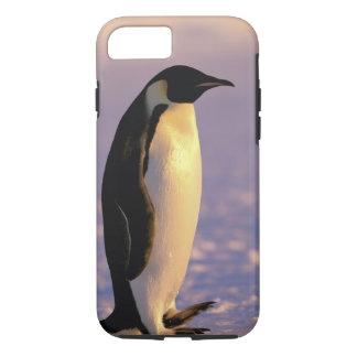 Antarctica, Australian Antarctic Territory, 4 iPhone 8/7 Case