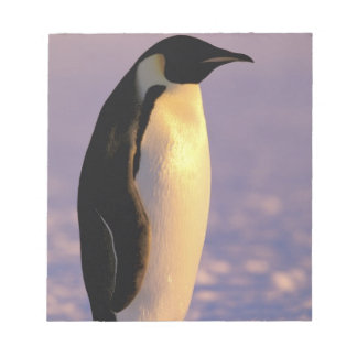 Antarctica, Australian Antarctic Territory, 4 Notepad