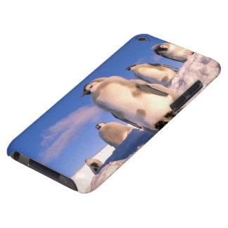 Antarctica, Australian Antarctic Territory, 6 iPod Touch Case-Mate Case