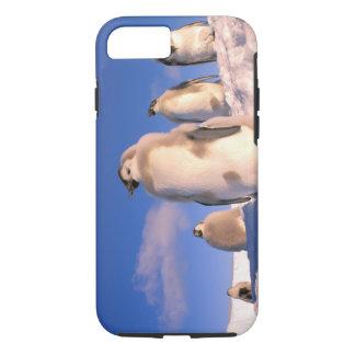 Antarctica, Australian Antarctic Territory, 6 iPhone 7 Case