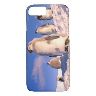 Antarctica, Australian Antarctic Territory, 6 iPhone 8/7 Case