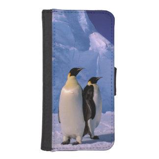 Antarctica, Australian Antarctic Territory, 7