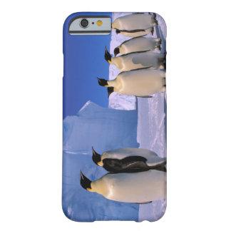 Antarctica, Australian Antarctic Territory, 7 Barely There iPhone 6 Case