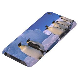 Antarctica, Australian Antarctic Territory, 7 Case-Mate iPod Touch Case