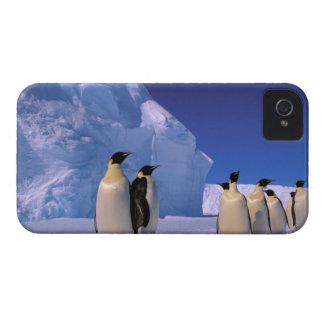 Antarctica, Australian Antarctic Territory, 7 iPhone 4 Cases