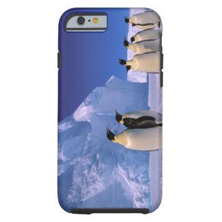 Antarctica, Australian Antarctic Territory, 7 Tough iPhone 6 Case