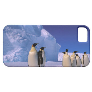Antarctica, Australian Antarctic Territory, 7 Case For The iPhone 5