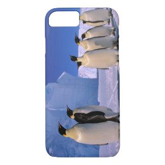 Antarctica, Australian Antarctic Territory, 7 iPhone 7 Case