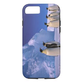 Antarctica, Australian Antarctic Territory, 7 iPhone 8/7 Case