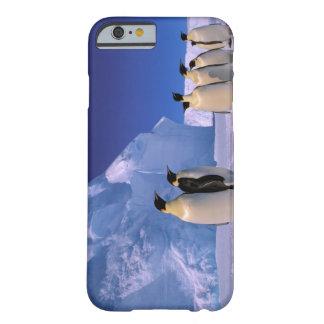 Antarctica Australian Antarctic Territory 7 iPhone 6 Case