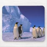 Antarctica, Australian Antarctic Territory, 7 Mouse Pads