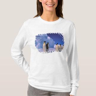 Antarctica, Australian Antarctic Territory, 7 T-Shirt