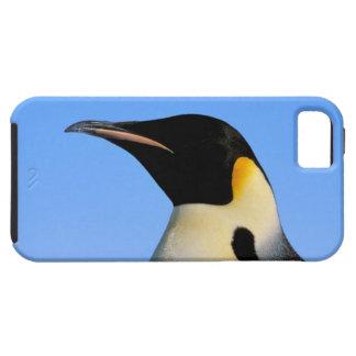 Antarctica, Australian Antarctic Territory, 8 iPhone 5 Cover