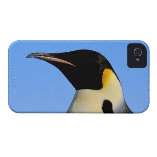 Antarctica, Australian Antarctic Territory, 8 Case-Mate iPhone 4 Cases