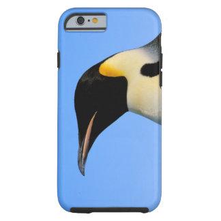 Antarctica, Australian Antarctic Territory, 8 Tough iPhone 6 Case
