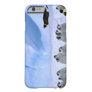 Antarctica, Australian Antarctic Territory, Cape Barely There iPhone 6 Case