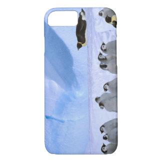 Antarctica, Australian Antarctic Territory, Cape iPhone 8/7 Case