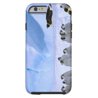 Antarctica Australian Antarctic Territory Cape iPhone 6 Case