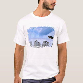 Antarctica, Australian Antarctic Territory, Cape T-Shirt