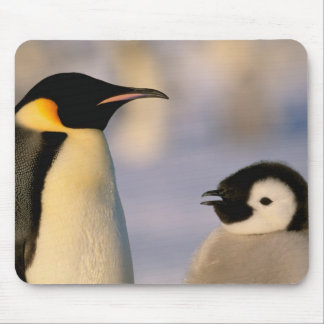 Antarctica, Australian Antarctic Territory, Mouse Mat