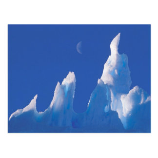 Antarctica, Australian Antarctic Territory. Postcard
