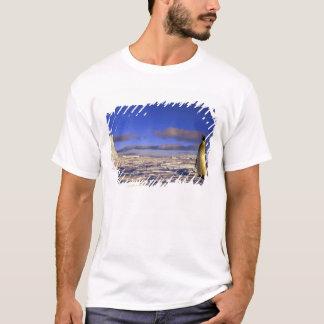 Antarctica, Cape Darnley. Emperor Penguin T-Shirt